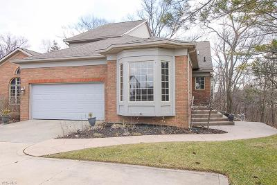Medina County Single Family Home For Sale: 5023 Burgundy Bay Blvd