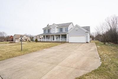 Medina County Single Family Home For Sale: 5456 Carriage Lane