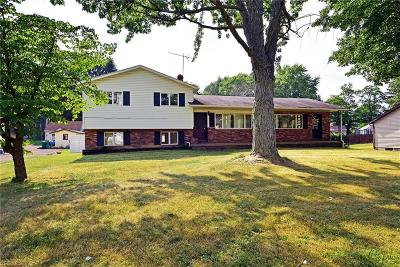 Summit County Single Family Home For Sale: 440 Fritsch Ave