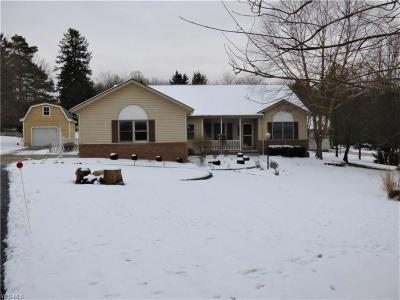 Cuyahoga County Single Family Home For Sale: 17900 Egbert Rd