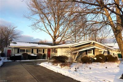Summit County Single Family Home For Sale: 247 Ledge Rd