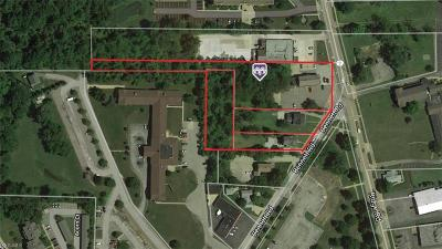 Commercial For Sale: 13632 Ridge Rd