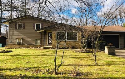 Summit County Single Family Home For Sale: 281 Starr Line Dr