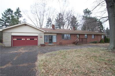 Painesville Township OH Single Family Home For Sale: $178,900