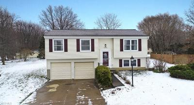 Mentor OH Single Family Home For Sale: $190,000