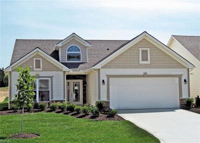 Strongsville Single Family Home For Sale: 22085 Olde Creek