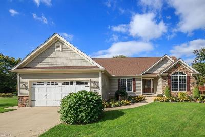 Madison OH Single Family Home For Sale: $298,000