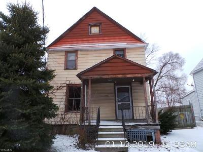 Elyria Single Family Home For Sale: 125 Homer Ct
