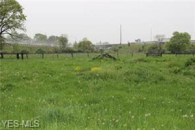 Lorain County Residential Lots & Land For Sale: Chestnut Ridge Rd.