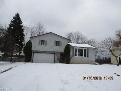 Cuyahoga County Single Family Home For Sale: 7243 Milbury Ct