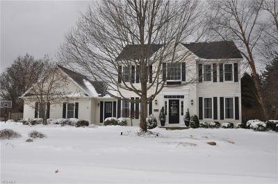 Lorain County Single Family Home For Sale: 506 Treeside Ln