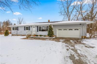 Bainbridge Single Family Home For Sale: 17813 Snyder Rd