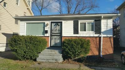 Cleveland Single Family Home For Sale: 3713 East 144th St