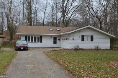North Olmsted Single Family Home For Sale: 28933 Tudor Dr