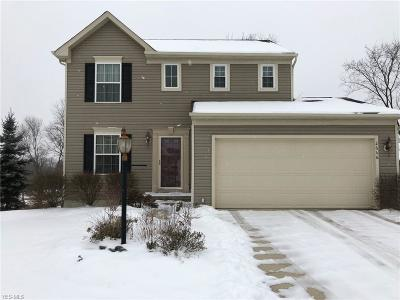 Medina County Single Family Home For Sale: 2666 Hollyhock Ln