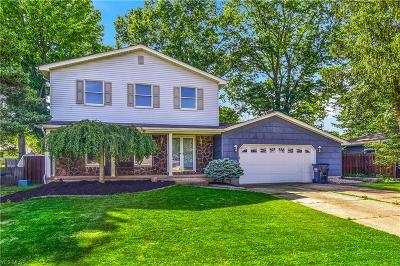 Canfield Single Family Home For Sale: 3502 Johnson Farm Dr