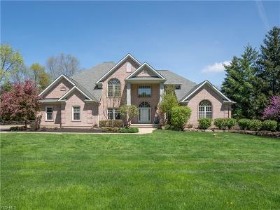 Brecksville Single Family Home For Sale: 9200 Reserve Run