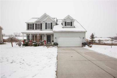 Kent Single Family Home For Sale: 4406 Ridge View Dr