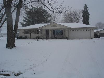 Canfield Single Family Home For Sale: 3667 Johnson Farm Dr