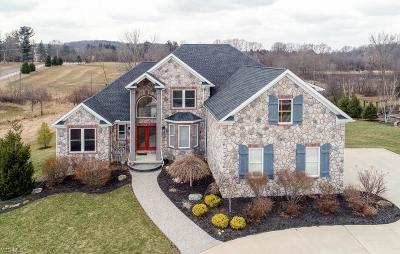 Summit County Single Family Home For Sale: 1917 Rock Creek South