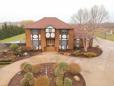 Medina County Single Family Home For Sale: 3800 Vandemark Rd