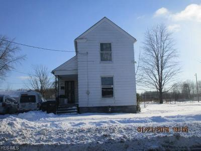 Elyria Single Family Home For Sale: 342 South Maple St