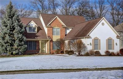 Single Family Home For Sale: 27126 Courtland Meadows