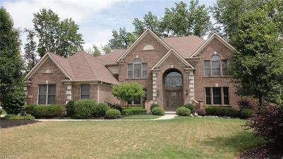 Strongsville Single Family Home For Sale: 11837 North Churchill Way