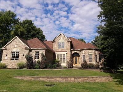 Broadview Heights Single Family Home For Sale: 8920 Chaucer Blvd
