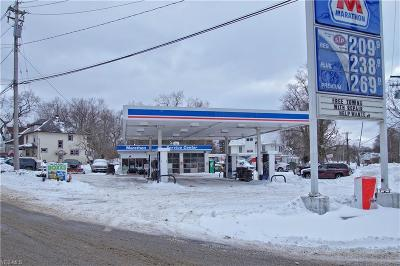 Ashtabula Commercial For Sale: 918 Bunker Hill Road