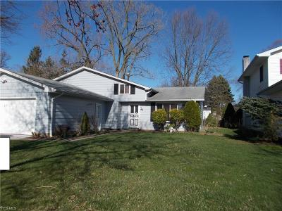 Elyria Single Family Home For Sale: 233 Naples Dr