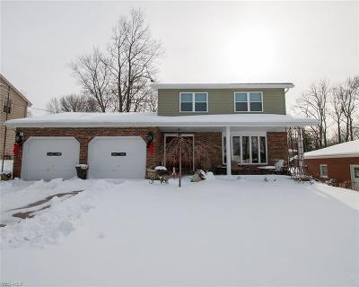 Boardman Single Family Home For Sale: 169 Green Bay Dr