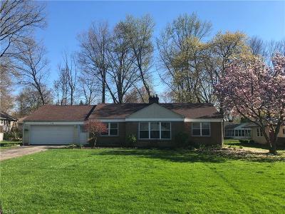 Youngstown Single Family Home For Sale: 224 Nesbitt St
