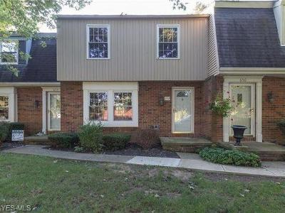 Medina OH Condo/Townhouse For Sale: $95,000