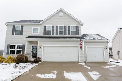 North Ridgeville Single Family Home For Sale: 37970 Terrell Dr