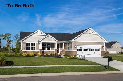 North Ridgeville Single Family Home For Sale: 14 Annie Ln