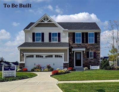 Berea Single Family Home For Sale: 270 Stone Ridge Way