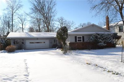 Strongsville Single Family Home For Sale: 18515 Main St