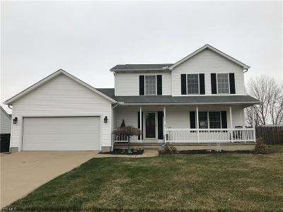 Elyria Single Family Home For Sale: 138 Teal St