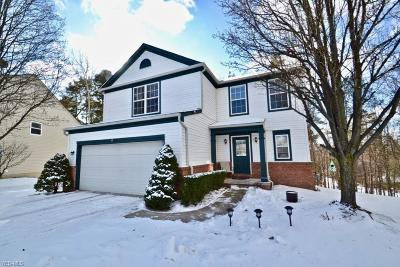 North Royalton Single Family Home For Sale: 14768 Thornton Dr
