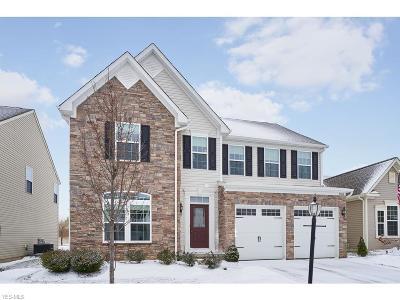 North Ridgeville Single Family Home For Sale: 9068 Stonegate