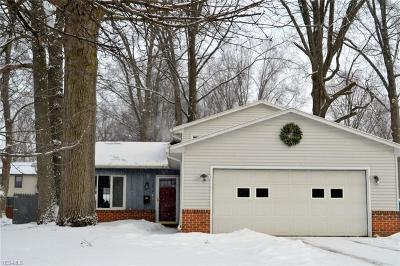 Avon Lake Single Family Home For Sale: 32636 Belle Rd