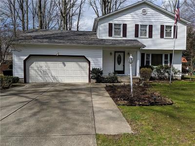 Youngstown Single Family Home For Sale: 5580 Lockwood Boulevard