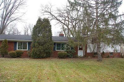 North Royalton Single Family Home For Sale: 14787 State Rd