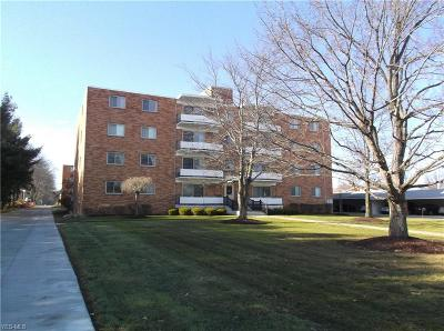 Broadview Heights Condo/Townhouse For Sale: 521 Tollis #489