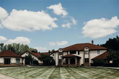 Medina Single Family Home For Sale: 4001 Foskett Rd