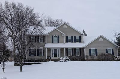 Poland Single Family Home For Sale: 8752 Spring Hill Trl