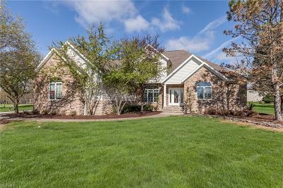 Medina Single Family Home For Sale: 6354 Burrow Ct
