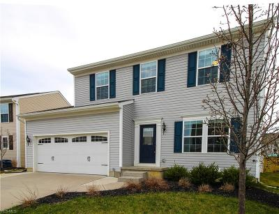 North Ridgeville Single Family Home For Sale: 9071 Stonegate Cir