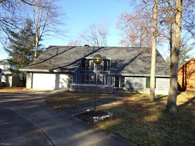Strongsville Single Family Home For Sale: 20150 Driftwood Ct